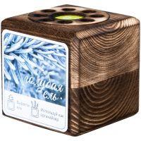 Набор для выращивания с органайзером «Экокуб Burn», ель голубая