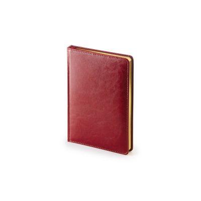 Ежедневник А5 датированный Sidney Nebraska 2021, бордовый